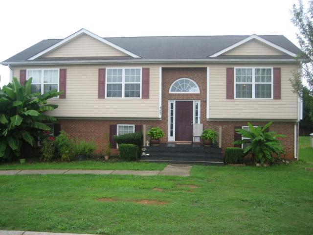 127 Ellie Lane, CHATSWORTH, GA 30705 (MLS #114902) :: The Mark Hite Team