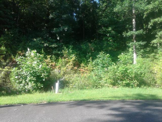 0 Galaxy Trail, CHATSWORTH, GA 30705 (MLS #112806) :: The Mark Hite Team