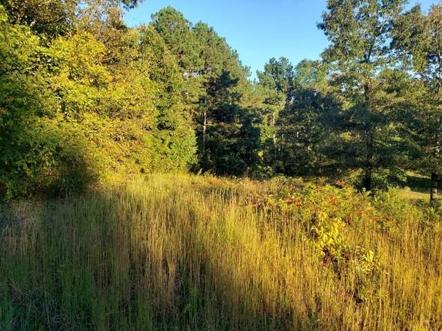 0 Ridge Pointe Lane, Cohutta, GA 30710 (MLS #117405) :: The Mark Hite Team