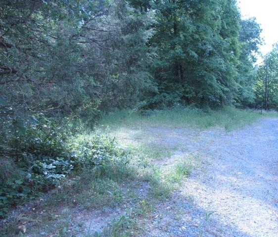 144 Dove Drive, CHATSWORTH, GA 30705 (MLS #114338) :: The Mark Hite Team