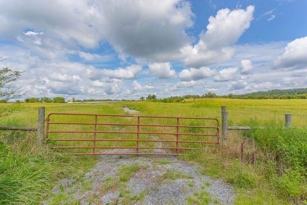 48 Acres County Line Road - Photo 1