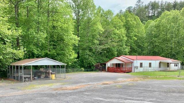 3875 Tails Creek Road, Ellijay, GA 30740 (MLS #116697) :: The Mark Hite Team