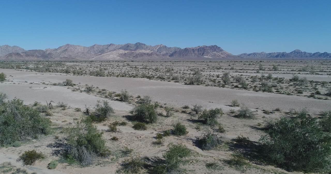 157 Acres - Photo 1