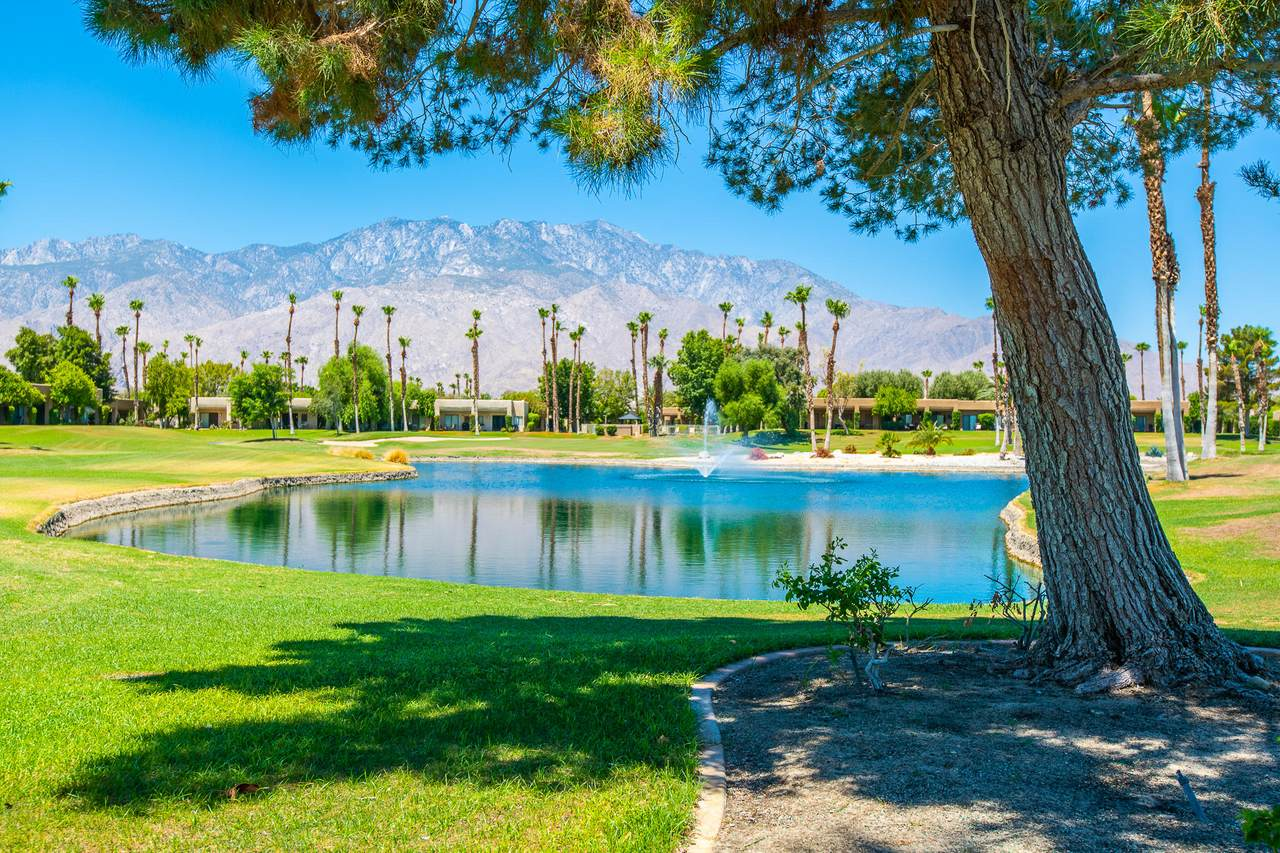 28859 Desert Princess Drive - Photo 1