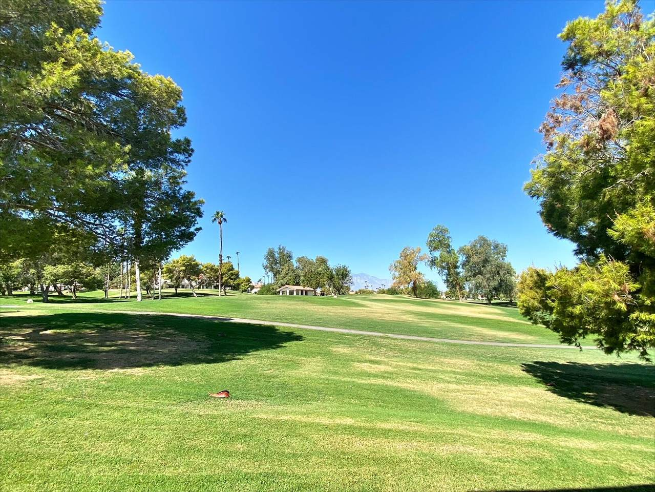 363 Desert Falls Drive - Photo 1