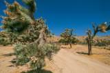 56638 Sunnyslope Drive - Photo 58
