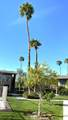 77845 California Drive - Photo 19