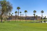 28284 Desert Princess Drive - Photo 24