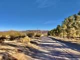 141 Tamarisk Road - Photo 20