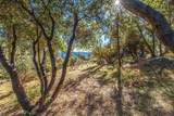 53475 Double View Drive - Photo 47