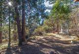 53475 Double View Drive - Photo 49