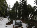 166 Golf Course Road - Photo 19