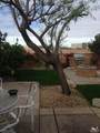 79760 Desert Willow Street - Photo 2