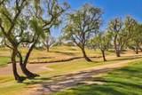 54228 Oak Tree - Photo 25