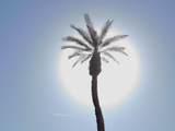 3 La Cerra Circle - Photo 18