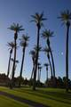 413 Desert Falls Drive - Photo 19