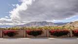 131 La Cerra Drive - Photo 30