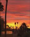 1655 Palm Canyon Drive - Photo 14