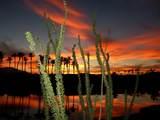 78398 Desert Willow Drive - Photo 40