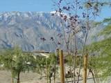 67760 Rio Vista Drive - Photo 14