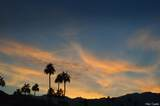 1411 Buena Vista Drive - Photo 24