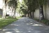 2210 Calle Bellota - Photo 4