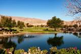 61067 Desert Rose Drive - Photo 64