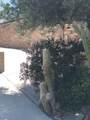 38250 Azalea Drive - Photo 18