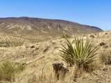 4058 Desert Moon Road - Photo 13