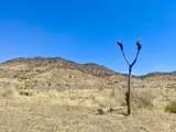 4058 Desert Moon Road - Photo 21