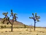 4058 Desert Moon Road - Photo 24