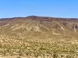 4058 Desert Moon Road - Photo 8