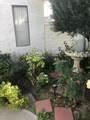 68329 Calle Leon - Photo 1