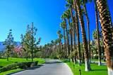 54525 Residence Club Drive - Photo 12