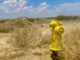 216 Condor Road - Photo 3