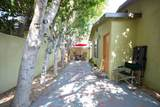 573 Calle Palo Fierro - Photo 104