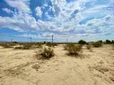 110 Cactus Drive - Photo 13