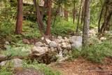 26220 Pine Dell Road - Photo 41