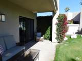 28386 Desert Princess Drive - Photo 34
