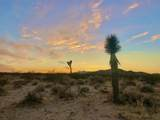 68 Moonlight Mesa Street - Photo 1
