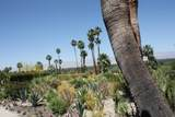 40320 Via Los Altos - Photo 3