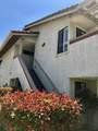 942 Lupine Hills Drive - Photo 6