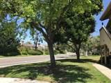 942 Lupine Hills Drive - Photo 8