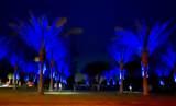 75310 Desert Park Drive - Photo 66