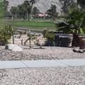 64718 Pinehurst - Photo 3