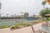48445 Alamo Drive - Photo 38