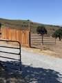 11750 Camino Escondido Road - Photo 19