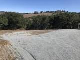11750 Camino Escondido Road - Photo 24