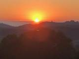 11750 Camino Escondido Road - Photo 26