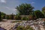 1227 Cassia Trail - Photo 36